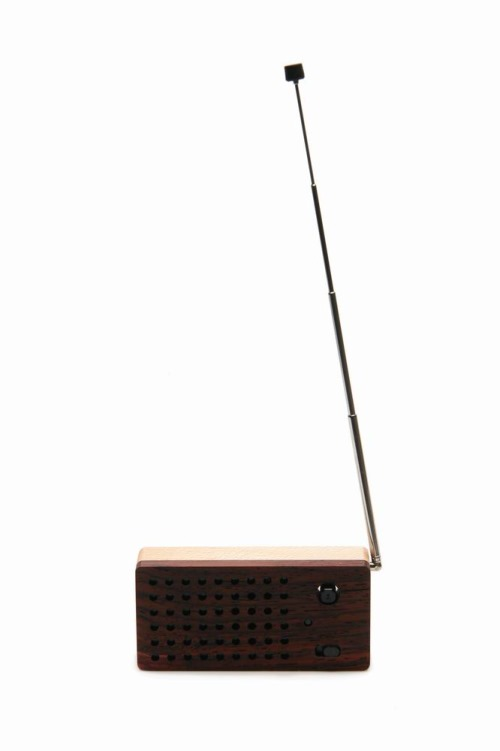 Motz Mini FM Wooden Radio and Speaker