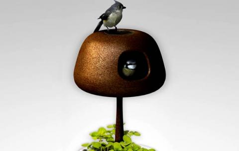 Award Winning Bird House Fits Inside Your Balcony