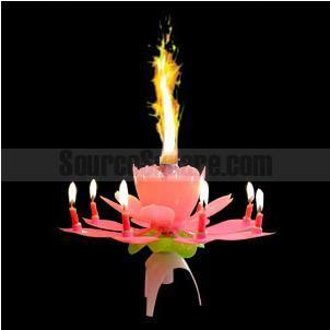 Magic Lotus Flower for Romantic Birthday Surprises