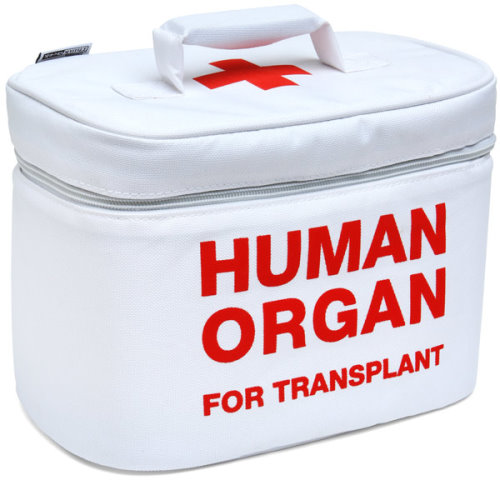Human Organ for Transplant Lunch Box